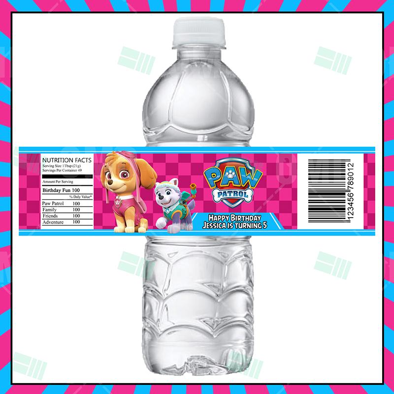 Paw Patrol Skye Cartoon Party Bottle Labels Cartoon Invites
